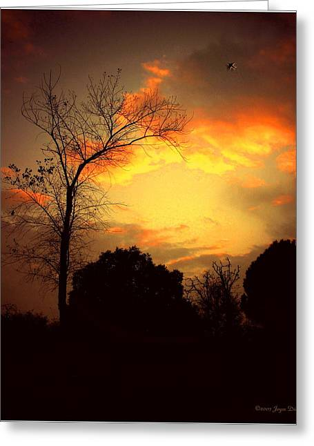 Greeting Cards - Cottonwood Sunset Greeting Card by Joyce Dickens