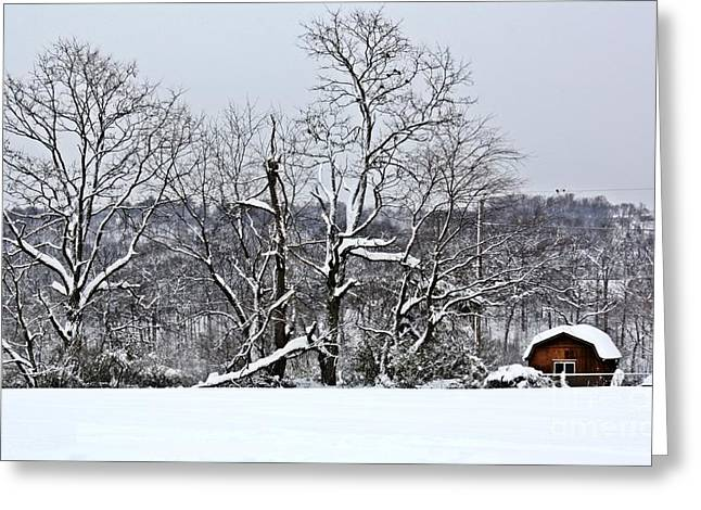 Winter Road Scenes Digital Greeting Cards - Country Christmas 5 Greeting Card by Dan Stone