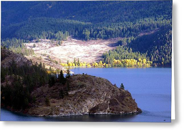 Peaceful Scene Greeting Cards - Country Color 4 Greeting Card by Will Borden