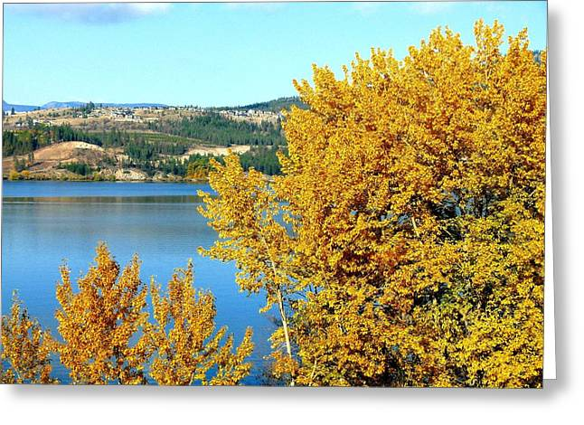 Peaceful Scene Greeting Cards - Country Color 5 Greeting Card by Will Borden
