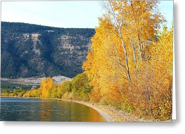 Peaceful Scene Greeting Cards - Country Color 6 Greeting Card by Will Borden