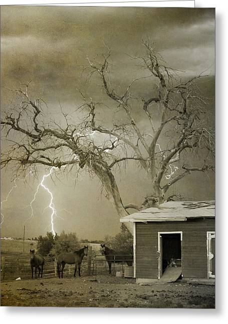 Storm Prints Greeting Cards - Country Horses Lightning Storm NE Boulder CO 66V BW ART Greeting Card by James BO  Insogna