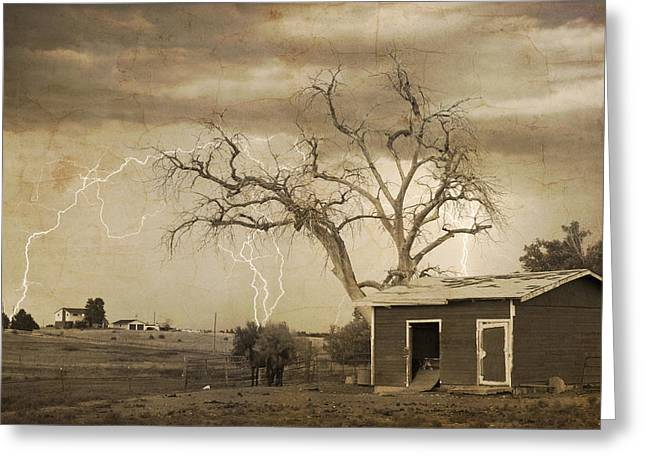 The Lightning Man Greeting Cards - Country Horses Lightning Storm NE Boulder County CO 76SepTX Greeting Card by James BO  Insogna