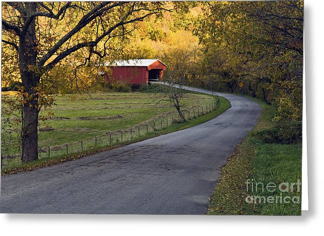 Indiana Landscapes Greeting Cards - Country Lane - D007732 Greeting Card by Daniel Dempster