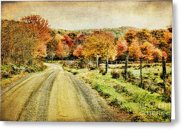 Gravel Road Greeting Cards - Country Lane Greeting Card by Darren Fisher