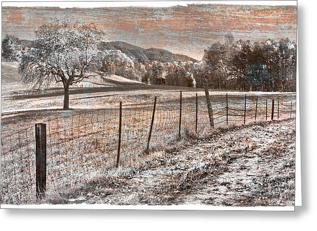 Fenceline Greeting Cards - Country Lane Greeting Card by Debra and Dave Vanderlaan