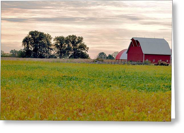 Macrocosm Photographs Greeting Cards - Country Living Greeting Card by Brittany H