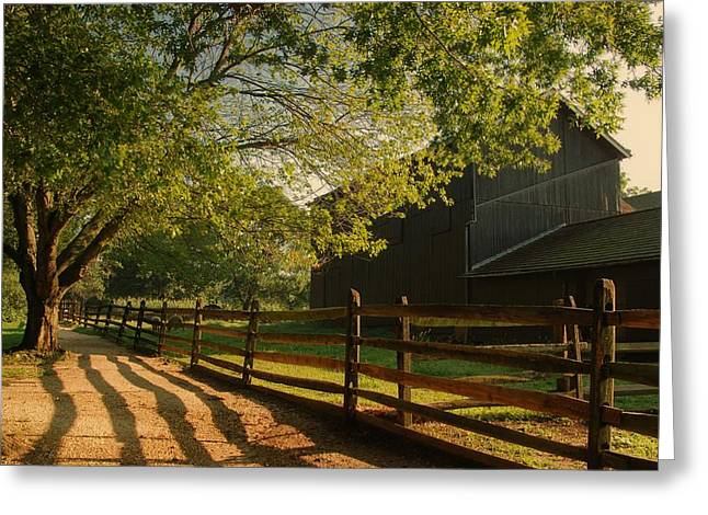 Shadows Framed Prints Greeting Cards - Country Morning - Holmdel Park Greeting Card by Angie Tirado