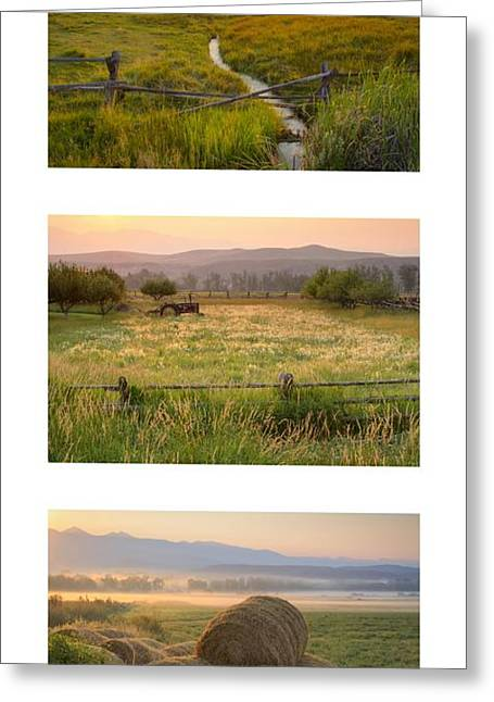 Salmon River Idaho Greeting Cards - Country Pink Trio Greeting Card by Idaho Scenic Images Linda Lantzy