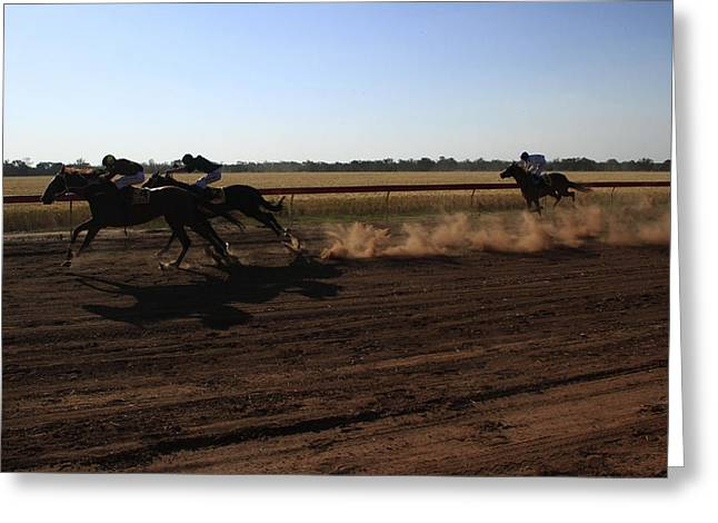 Galloper Greeting Cards - Country Race Meeting Greeting Card by Noel Elliot