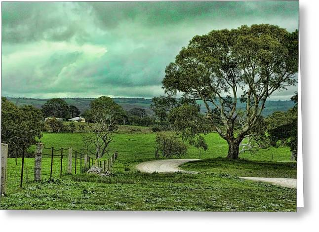 Country Dirt Roads Greeting Cards - Country Road Greeting Card by Douglas Barnard