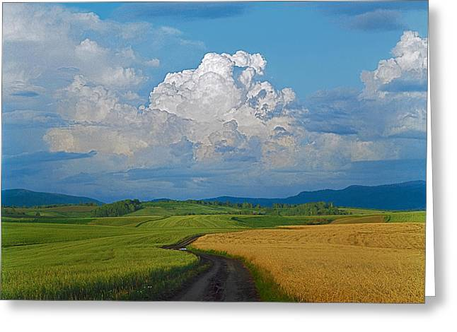 Agronomy Greeting Cards - Country road Greeting Card by Pavel  Filatov