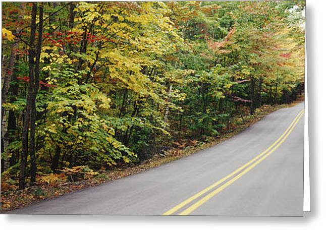 Rural Maine Roads Photographs Greeting Cards - Country Road Through Maine Forest Greeting Card by Jeremy Woodhouse