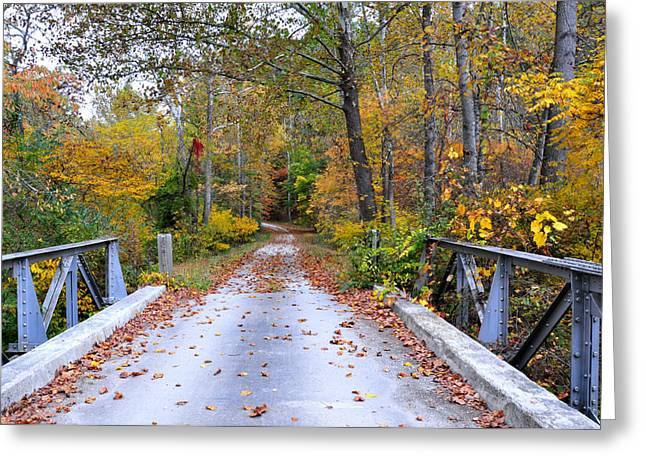 Country Dirt Roads Greeting Cards - Country Road Greeting Card by Todd Hostetter