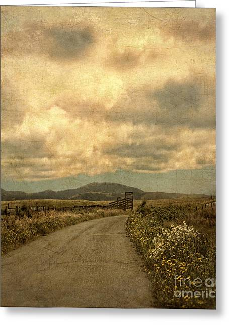 Mountain Road Greeting Cards - Country Road with Wildflowers Greeting Card by Jill Battaglia