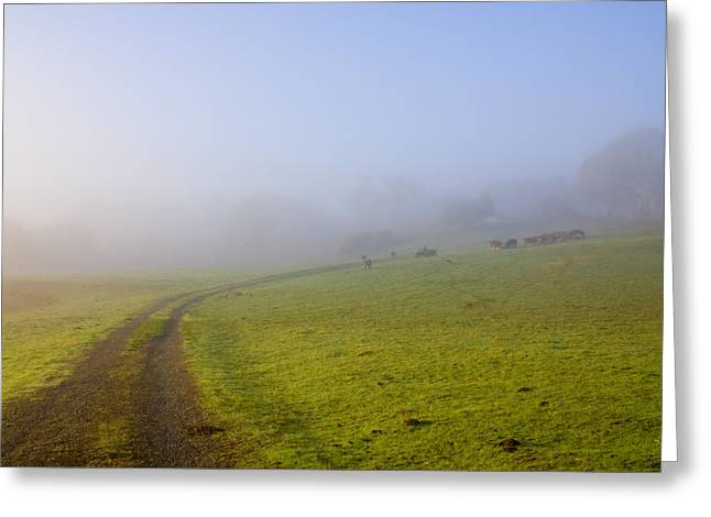 Country Roads Greeting Card by Mike  Dawson