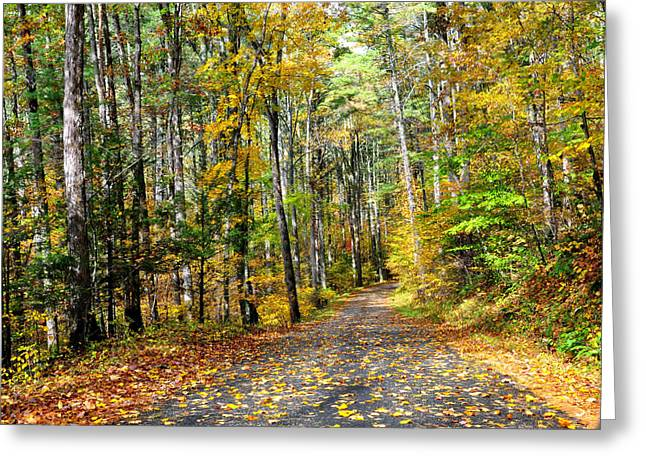 Autum Greeting Cards - Country Roads Greeting Card by Todd Hostetter
