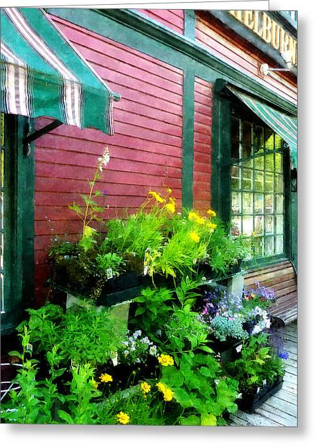 Shelburne Greeting Cards - Country Store Greeting Card by Susan Savad