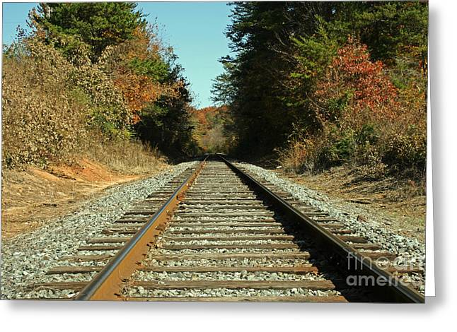 Sale Printing Greeting Cards - Country Tracks 2 Greeting Card by Michael Waters