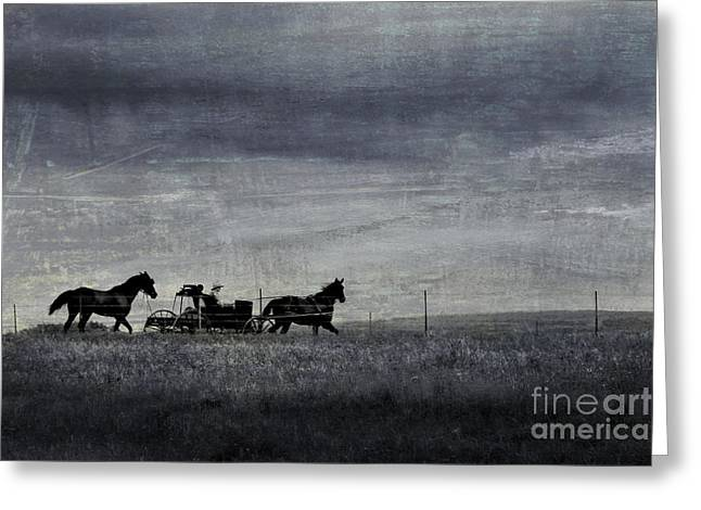 Amish Farms Greeting Cards - Country Wagon Greeting Card by Perry Webster