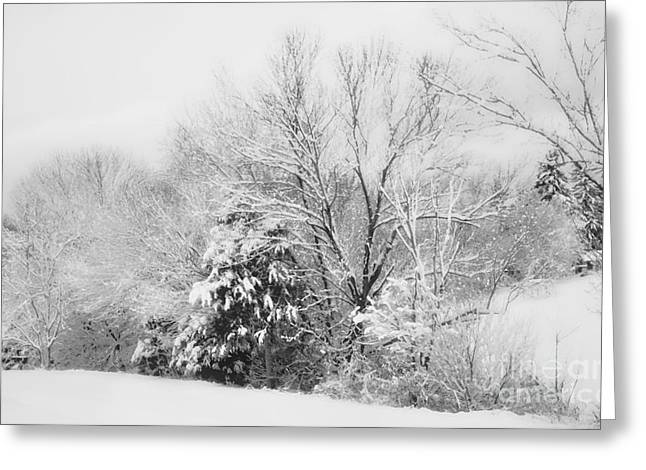Snow Scene Landscape Greeting Cards - Country Winter Greeting Card by Kathy Jennings