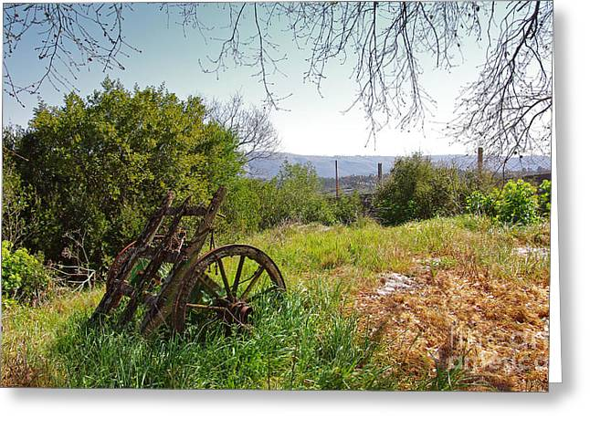 Old Relics Greeting Cards - Countryside Wagon Greeting Card by Carlos Caetano