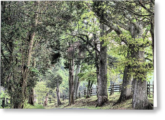 County Roads Greeting Card by JC Findley