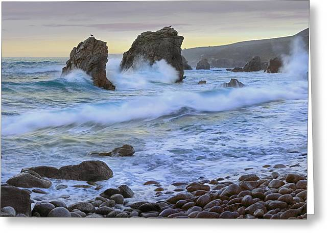 Big Sur California Greeting Cards - Cove And Seastacks Near Garrapata State Greeting Card by Tim Fitzharris