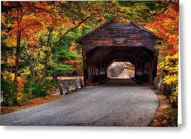 Metal Covered Bridges : Covered bridge in fall photograph by richard siggins