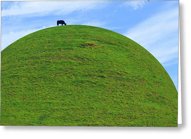 Black Top Digital Art Greeting Cards - Cow Eating On Round Top Hill Greeting Card by Mike McGlothlen