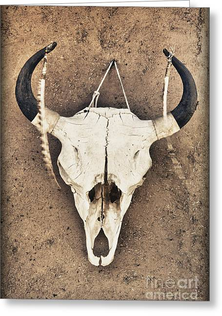 Taos Greeting Cards - Cow Skull Greeting Card by Bryan Mullennix