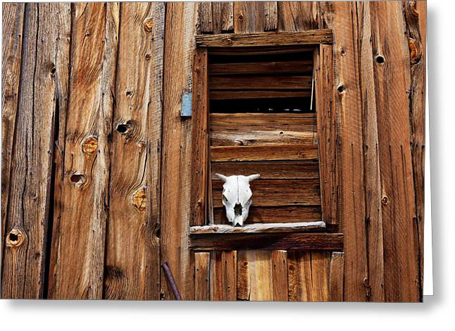 Horns Greeting Cards - Cow skull in wooden window Greeting Card by Garry Gay
