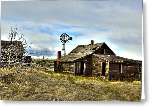 Horse And Buggy Greeting Cards - Cowboy Cabin Greeting Card by Steve McKinzie