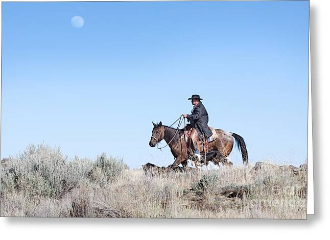ist Working Photo Photographs Greeting Cards - Cowboy Desert Moon Greeting Card by Cindy Singleton