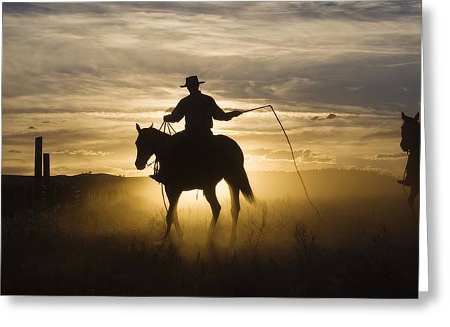 Silhouettes Of Horses Greeting Cards - Cowboy On Domestic Horse Equus Caballus Greeting Card by Konrad Wothe