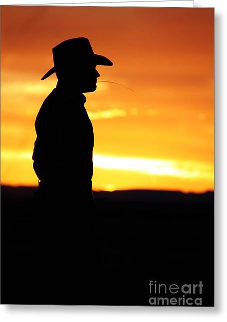 Val Armstrong Greeting Cards - Cowboy Sunset Greeting Card by Val Armstrong
