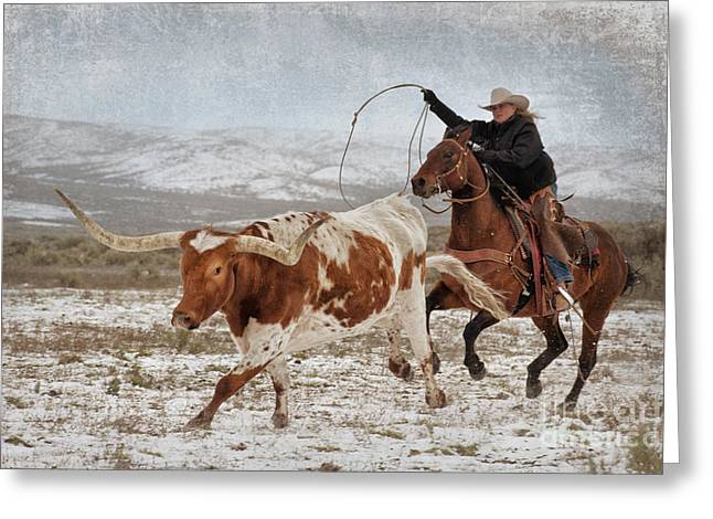 Colorado Cowgirl Greeting Cards - Cowgirl Roping Longhorn Greeting Card by Heather Swan