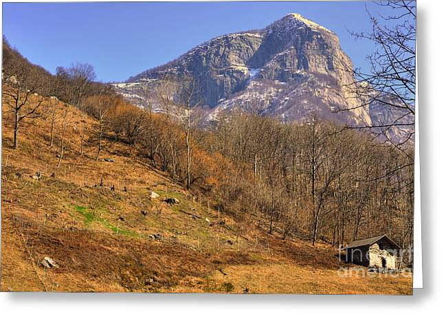 Cowhouse Greeting Cards - Cowhouse and snow-capped mountain Greeting Card by Mats Silvan