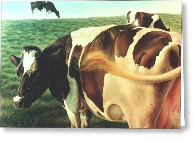 Cows 2 Greeting Card by Hans Droog