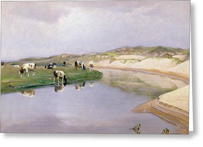 River Paintings Greeting Cards - Cows Grazing at Liver As North Jutland Greeting Card by Niels Pedersen Mols