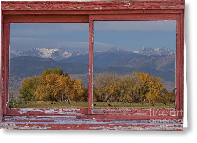 Haystack Framed Prints Greeting Cards - Cows Life Colorado Autumn Rocky Mountains Picture Window Art Greeting Card by James BO  Insogna