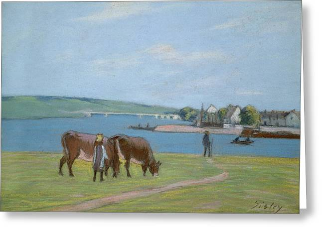 Cattle Pastels Greeting Cards - Cows on the Banks of the Seine at Saint Mammes Greeting Card by Alfred Sisley