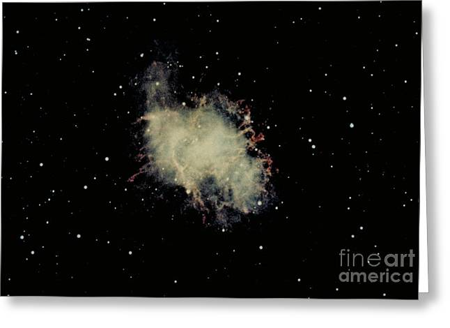 Crab Nebula Greeting Cards - Crab Nebula Greeting Card by Hale Observatories