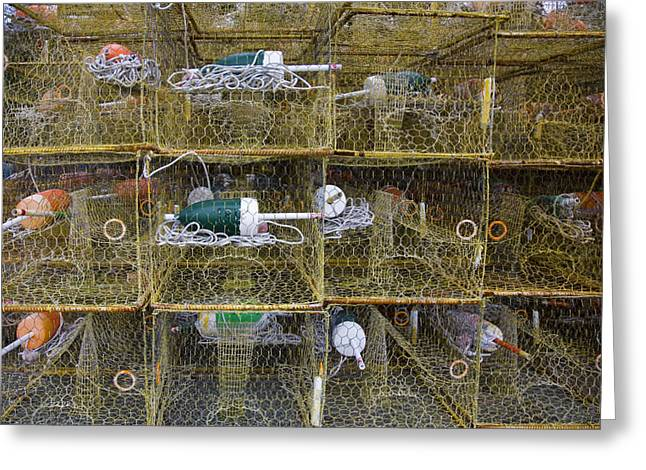 Crab Traps Greeting Cards - Crab Traps And Buoys Stacked Greeting Card by David Evans