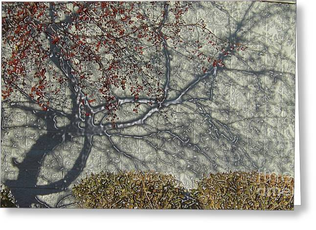 Effervescent Digital Greeting Cards - Crabapple Mercury Shadows Greeting Card by Feile Case