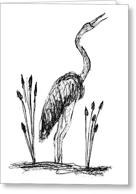 Wild Life Drawings Greeting Cards - Crane Greeting Card by Gail Schmiedlin