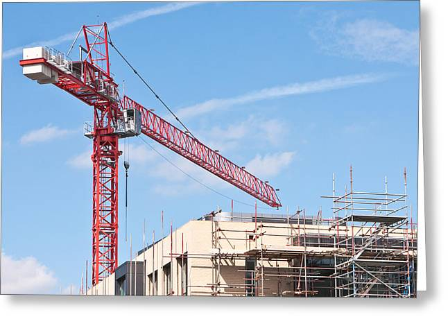 Social Photographs Greeting Cards - Crane Greeting Card by Tom Gowanlock