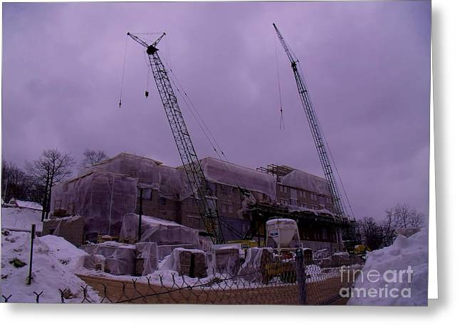Building Crane Greeting Cards - Cranes Northern Habitat Greeting Card by The Stone Age