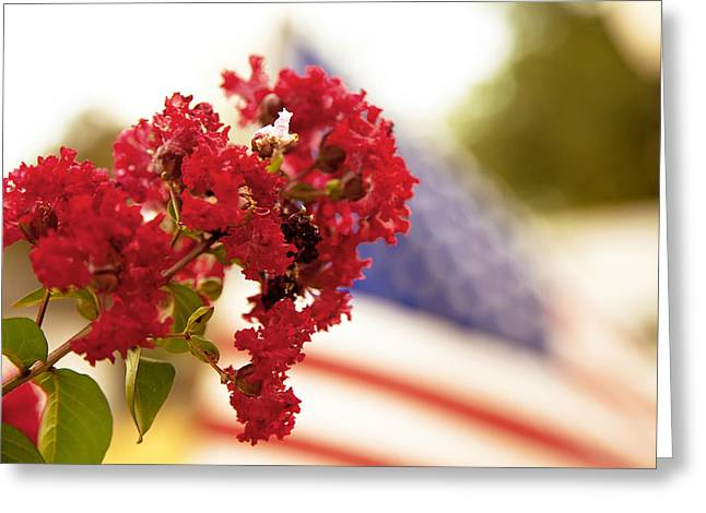 Crapemyrtle And Patriotic Proud Greeting Card by Toni Hopper