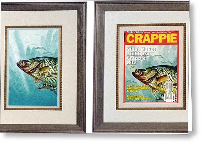 Crappies Greeting Cards - Crappie and Minnows Greeting Card by JQ Licensing